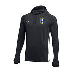 Nike Academy 19 Hoodie - Women's Grey - Pats Crest
