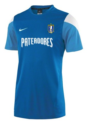 Nike Squad Jersey (blue)
